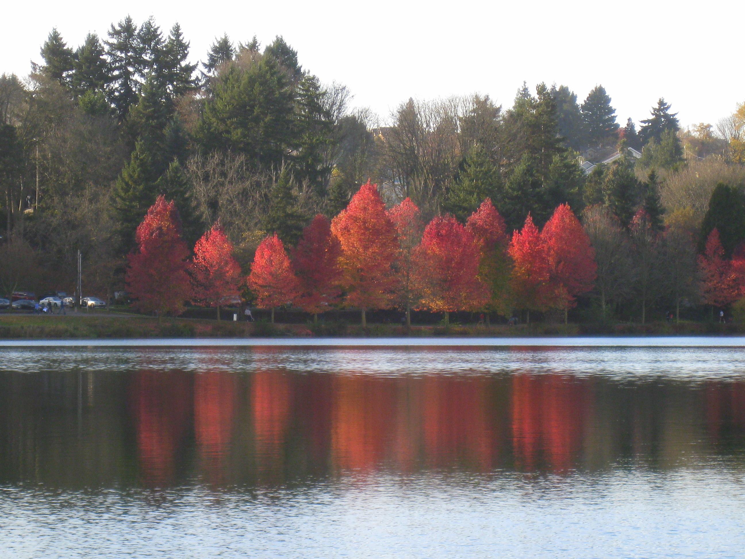 Red lake, Green Lake